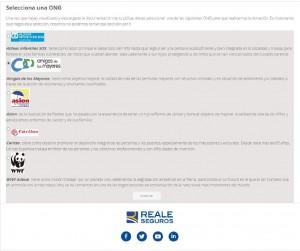 valenciarisksolutions_seguro_auto_responsable_ong_4